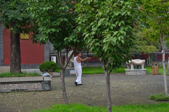 Un uomo lento tra gli alberi